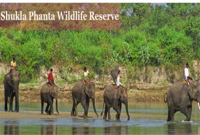 Shukla Phanta Wildlife Safari