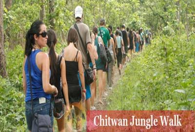 Chitwan 4 Night / 5 Days Package
