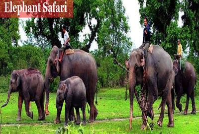Chitwan 5 Night / 6 Days Package